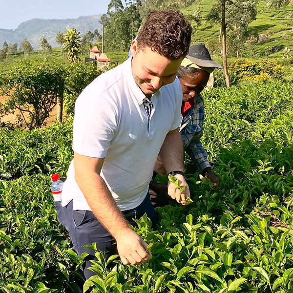 "Chris on ""Tea Around the World Tour"": Sri Lanka"